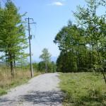 物件北東側より南方向を撮影。敷地は道路右側。