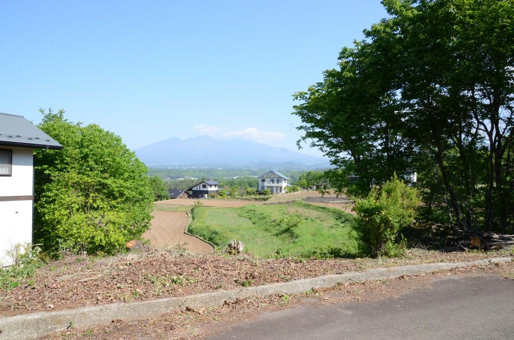 物件南側から撮影。正面に八ヶ岳。右側樹木は山桜。