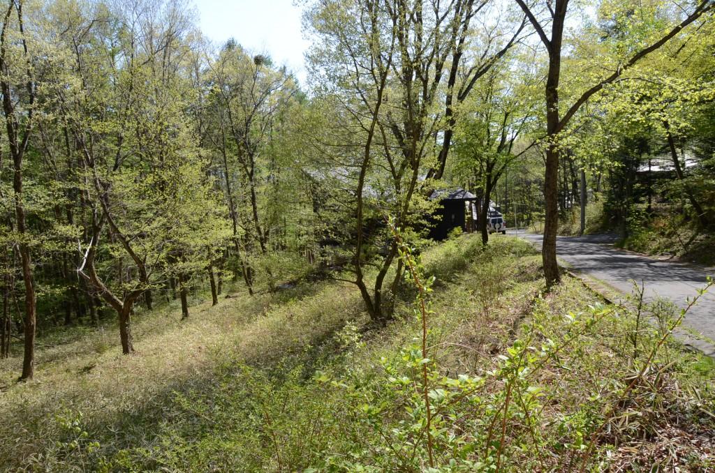 敷地北東側から西方向を撮影。