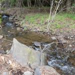 東側境界沿いに流れる小川。南側から北方向を撮影。