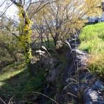 物件東側の様子。石垣の下に小川が流れています。物件は石垣右側部分。
