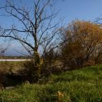 物件東南方向を撮影。木々の下、石垣の下に小川が流れています。遠くに茅ケ岳の眺望。