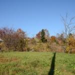 敷地南西側から北東方向を撮影。