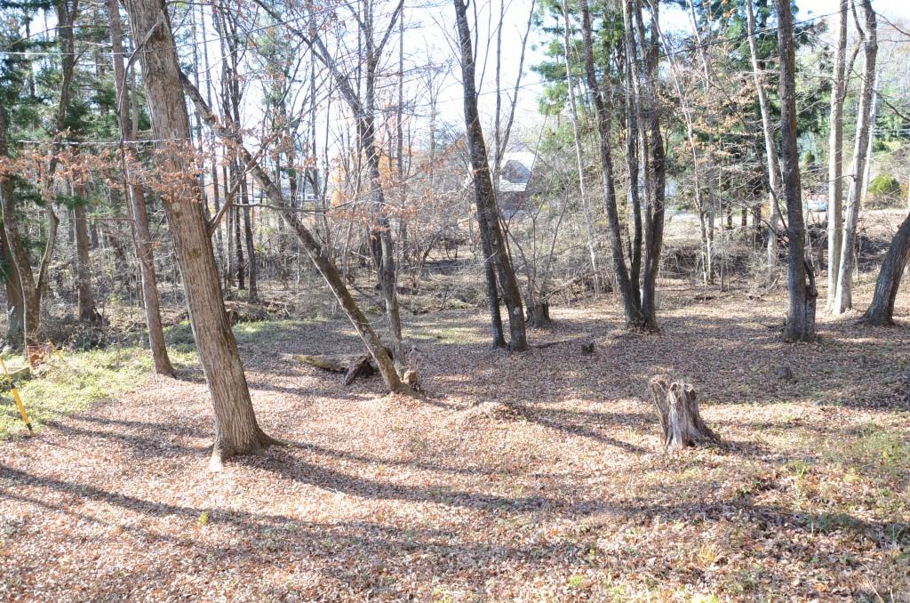 敷地南側中央付近から西方向を撮影。西方向への緩傾斜。