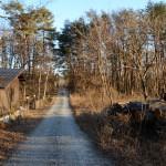 物件北東側公道の西側から東方向を撮影。