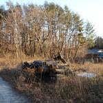 物件北西側から東方向を撮影。伐採された道路右側が物件。
