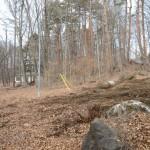 敷地南側中央付近から北方向を撮影。