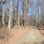 物件南側道路の西側から東方向を撮影。
