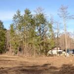 敷地東南側から北方向を撮影。北側ヒノキ部分までが敷地。