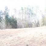 敷地東側から西方向を撮影。