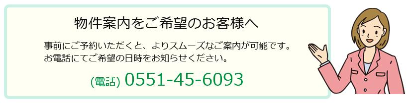 guide_info