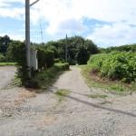 敷地へつながる公道の北側から南方向を撮影。道路突き当りが敷地。