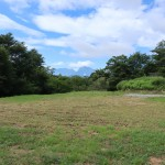 敷地北東側から南西方向を撮影。草地部分全てが敷地。