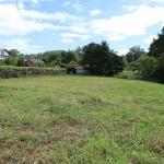 敷地西側から東方向を撮影。敷地は草地部分全て。