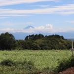 敷地東南側から富士山方向を撮影。手前に蕎麦畑が広がる。