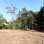 物件西側公道から東方向を撮影。敷地は伐採された部分。