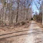 物件西側公道の南側から北方向を撮影。左に入る道路が物件への私道。
