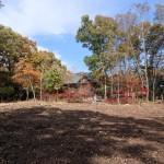 敷地南側から北方向を撮影。北側隣地はログハウスの別荘。