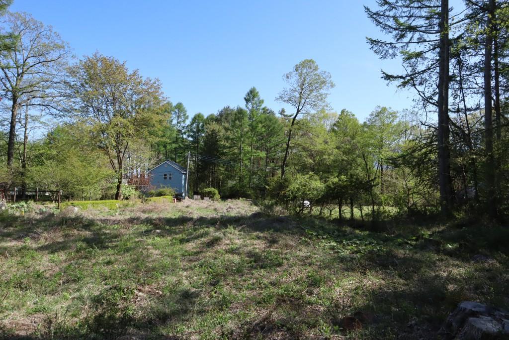 敷地北側から南方向を撮影。前方の水色の建物の手前までが敷地。