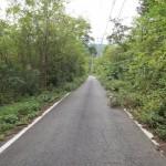 私道入口から公道の東方向を撮影。