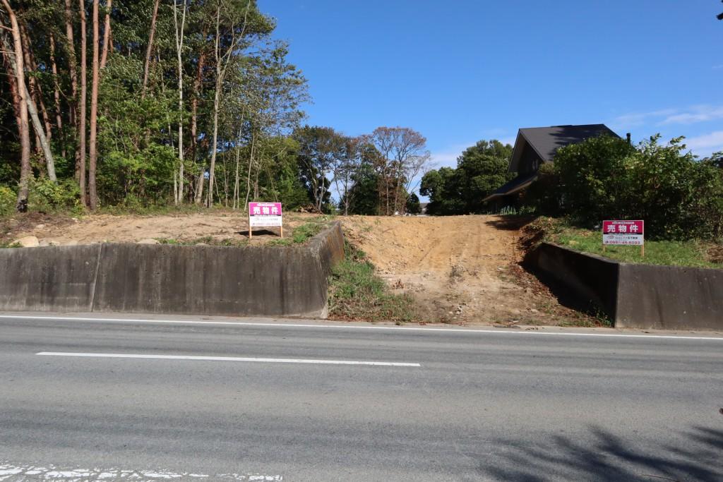 物件西側からの全景。手前の道路が県道28号線。物件は道路から3m程の高台。
