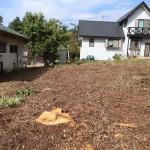 敷地東南側から西方向を撮影。敷地南側には平屋の別荘あり。