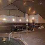 手前の大浴場の奥にジャグジー風呂。その奥に20度に設定された水風呂。その奥がサウナ。