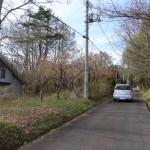 物件東南側から北方向を撮影。道路は物件東側に接面する舗装私道(開発道路)。