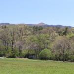 敷地中央付近から東方向を撮影。飯盛山の頂上部分を眺望。